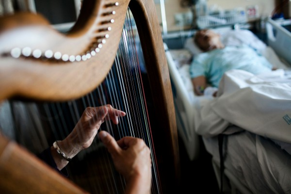 Jeri Howe's fingers pluck at the colored strings of her harp as she plays for bedridden patient and stroke victim, Albert Lundeen, right, Friday, Aug. 24, 2012, at Providence Regional Medical Center in Everett, Wash.